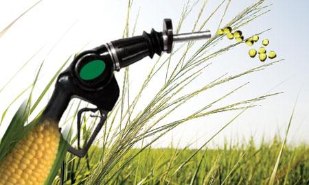 Biocarburanti e fame: report di Oxfam Italia sulle conseguenze alimentari (e climatiche) delle politiche europee a favore dei biofuels