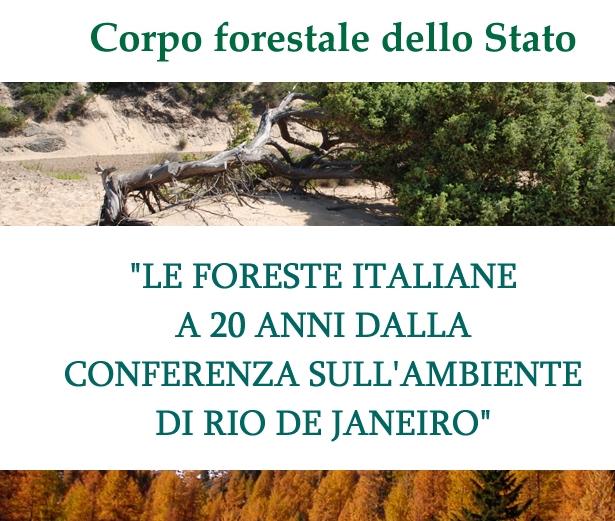 INFC (Inventario Nazionale Forestale sui serbatoi di Carbonio): oltre un miliardo di tonnellate di carbonio stoccato nelle foreste nazionali