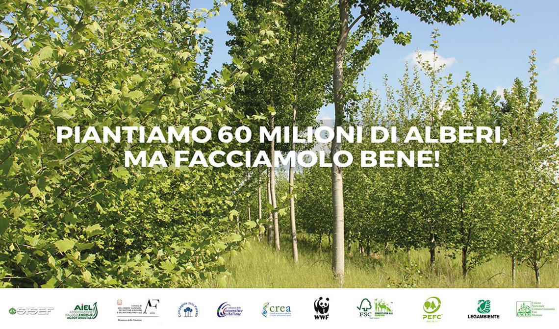 alberi-italia-60-milioni-di-alberi