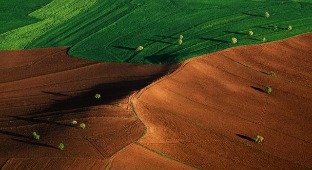 Cambiamento climatico e territorio: dal report IPCC rischi per  sicurezza alimentare, biodiversità e servizi ecosistemici