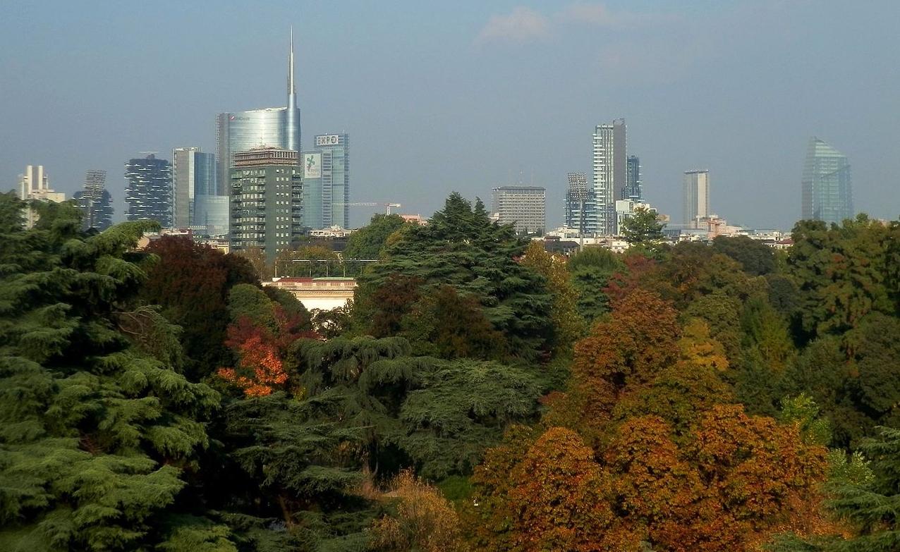 ForestaMI: forestazione urbana a Milano, nuovi alberi in città