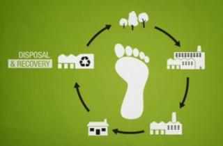 Collegato ambientale: avanti alle certificazioni e all'ecolabel negli appalti pubblici