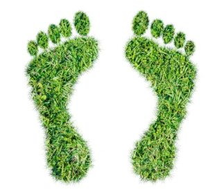 Product Environmental Footprint (PEF) e Organisation Environmental Footprint (OEF): valutazione dell'impronta ambientale