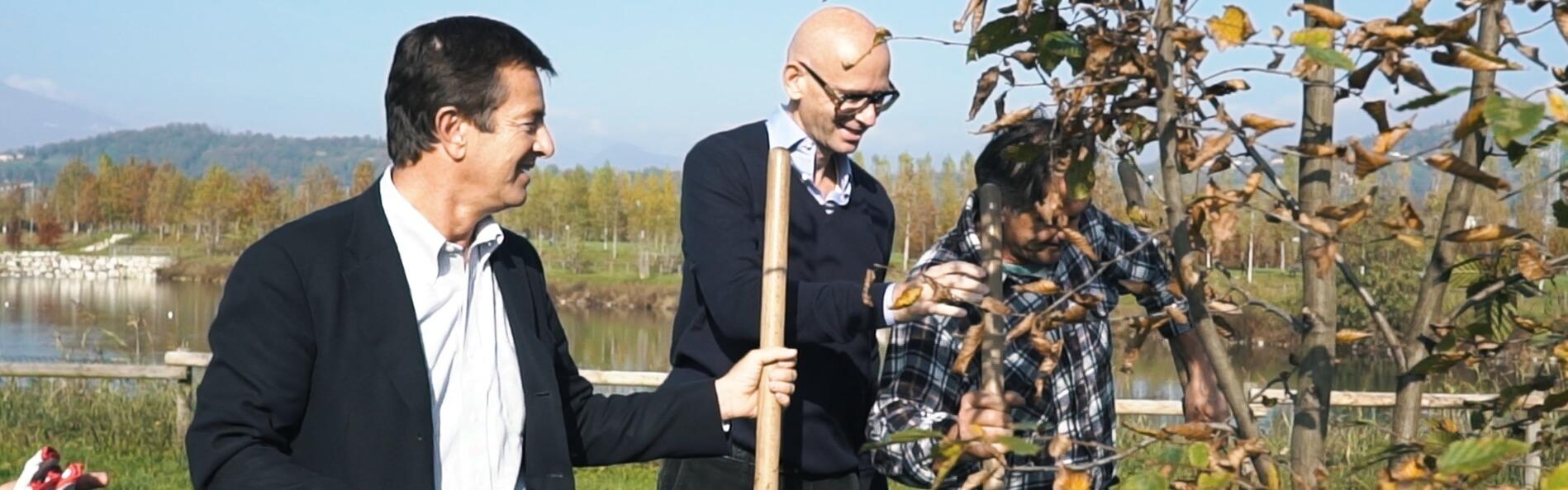DHL Tree Planting