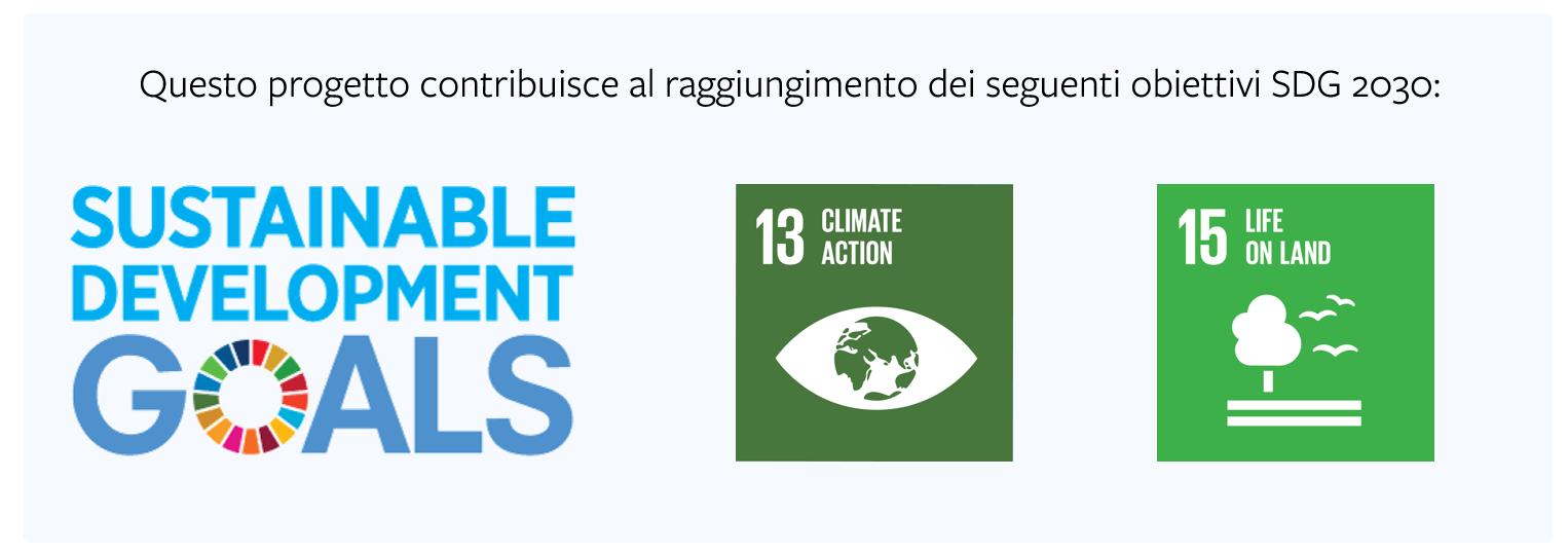gestione-forestale-sostenibile-servizi-ecosistemici