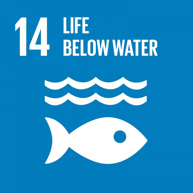 Agenda 2030: gli obiettivi ambientali di sviluppo sostenibile. SDG 14 – Vita sott'acqua