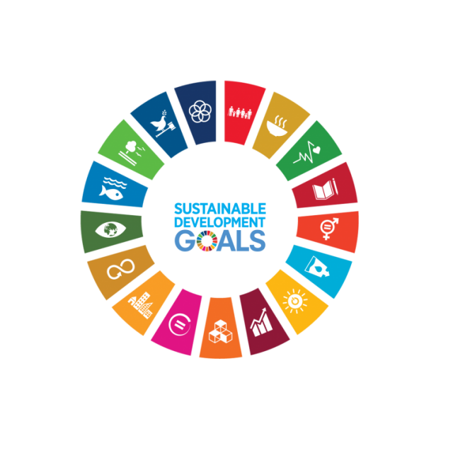 Agenda 2030 e SDGs (Sustainable Development Goals): gli obiettivi ambientali di sviluppo sostenibile