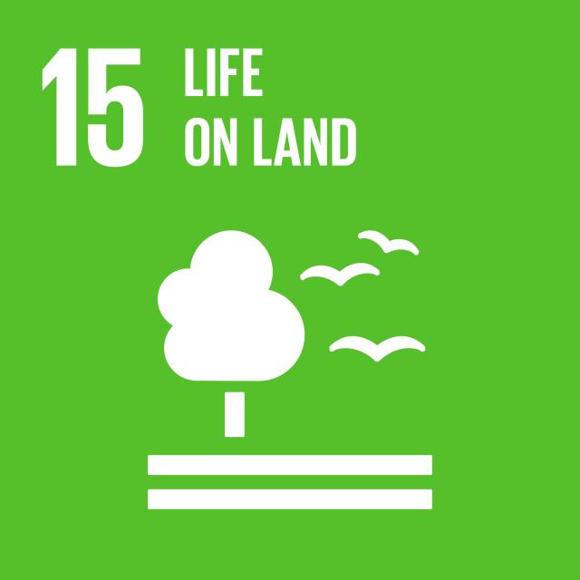 Agenda 2030: gli obiettivi Ambientali di sviluppo sostenibile. SDG 15 – Vita sulla Terra