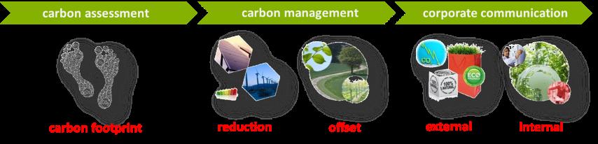 carbon-assessment_carbon-management