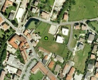 Forestazione urbana per la compensazione di CO2 a Cantù (CO)