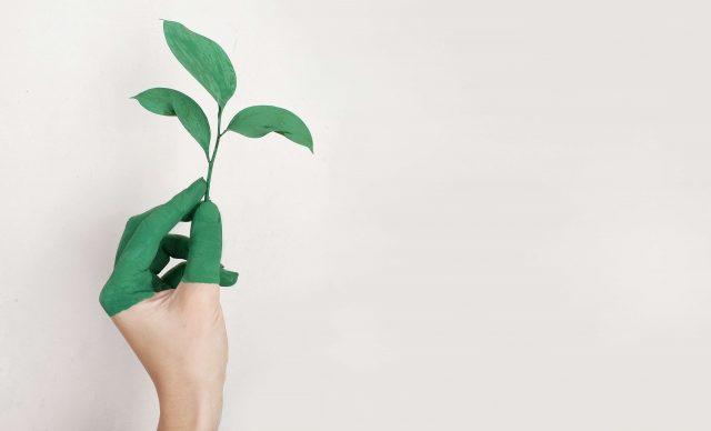 Soluzioni innovative per affrontare le sfide ambientali, verso consumi e produzioni sostenibili