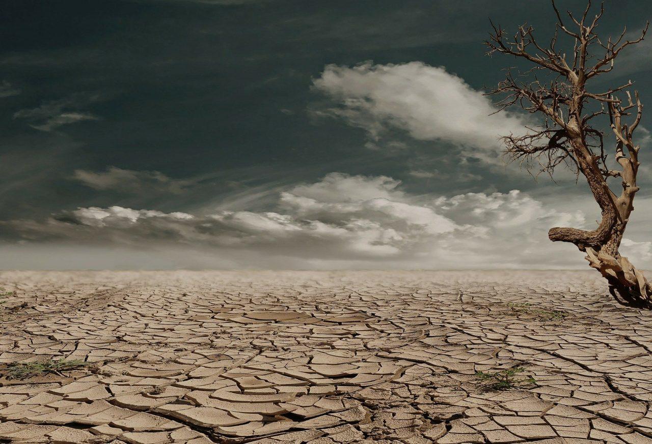 bozza IPCC