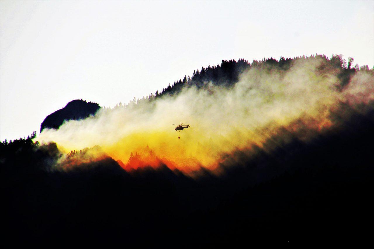 Prevenzione degli incendi boschivi attraverso la gestione forestale sostenibile certificata
