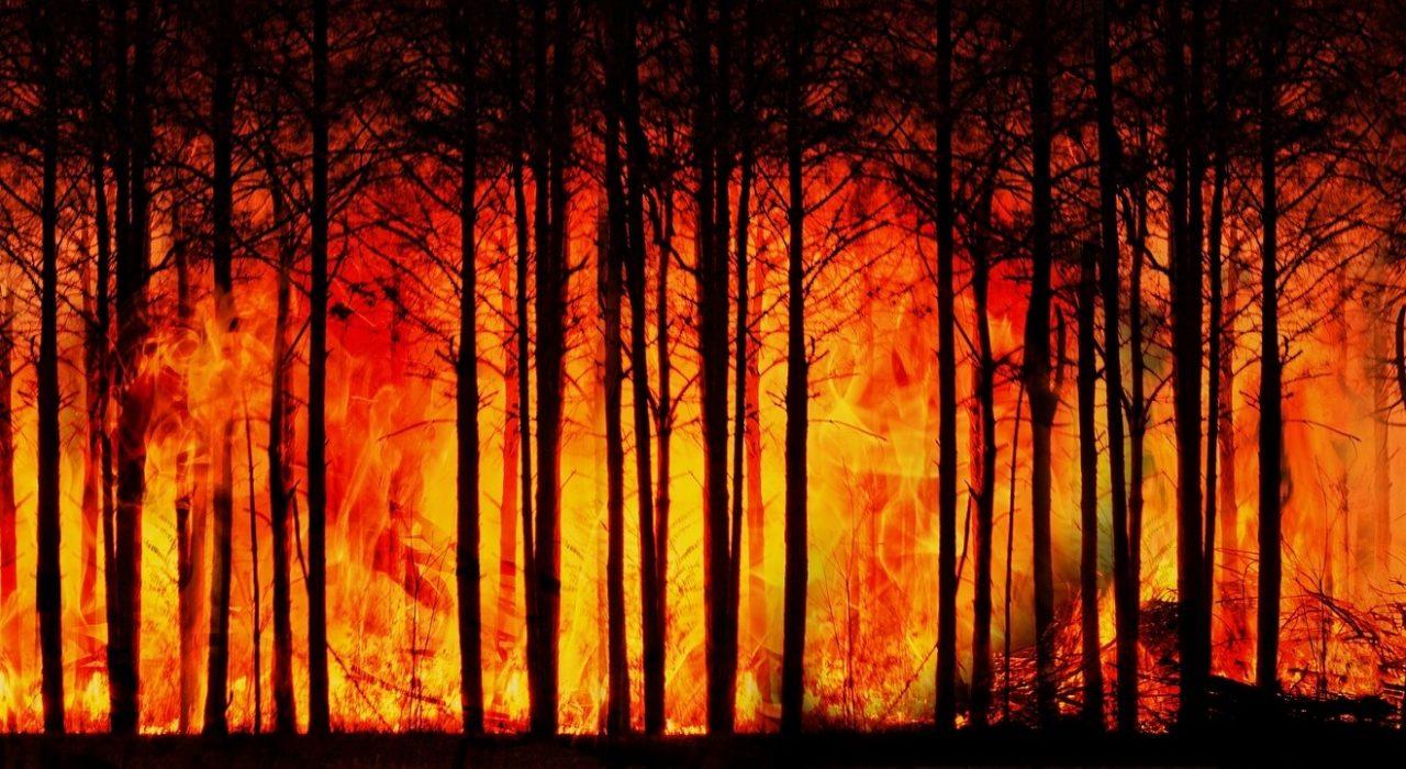 Riscaldamento climatico ed eventi meteo estremi: una correlazione sempre più chiara