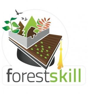 Concorso Forest Skill: siamo i vincitori con il progetto FELCE