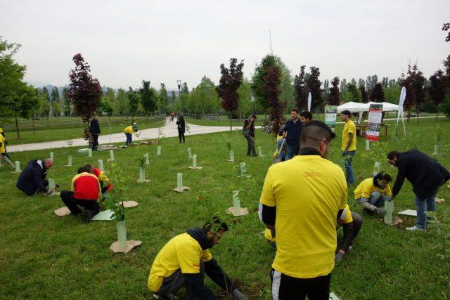 Forestazione urbana in Italia: utile al territorio locale ed al clima globale, con il patrocinio del Ministero dell'Ambiente