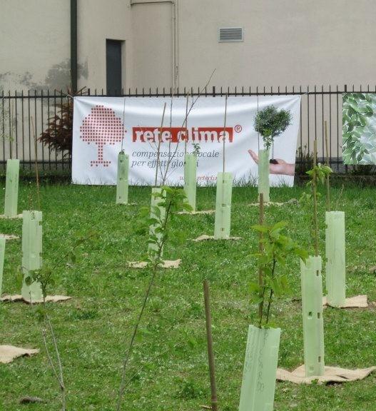 Un albero per ogni nato (e Giornata nazionale dell'albero – Legge 10/2013)