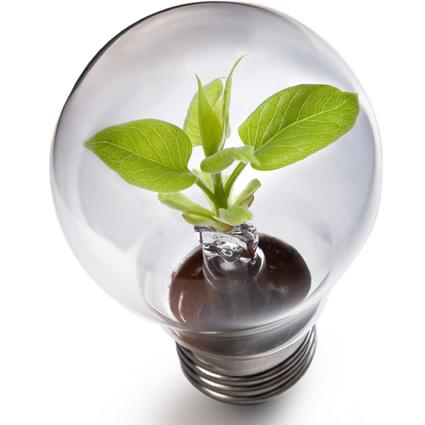 gpp_green_public_procurement_appalti_verdi_pubbliche_amministrazioni