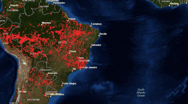 Brucia l'Amazzonia, brucia il nostro futuro. E la causa non è (solo) Bolsonaro, siamo anche noi