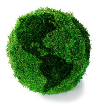 mondo_verde
