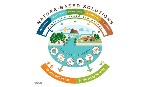 nature-based-solutions