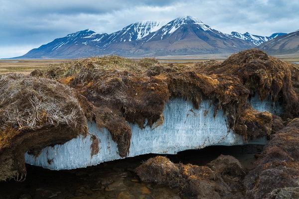 permafrost_tundra