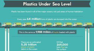Plastiche e microplastiche in Mari e Oceani: qualche informazione ed una infografica di sintesi