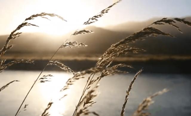 VIDEO – Ripresa green dopo il Coronavirus. Si può fare, si deve fare. Per il nostro futuro